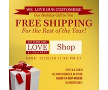 FREE SHIPPING Until the End of the Year!