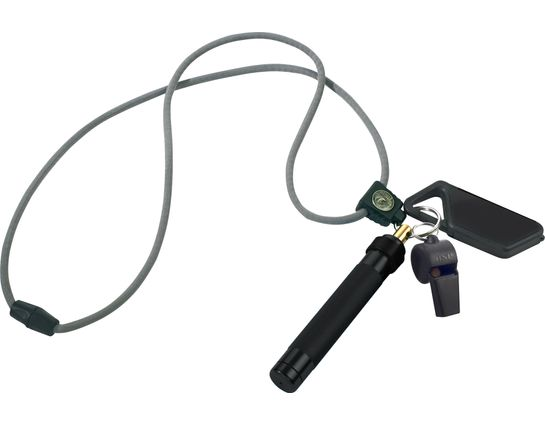 ASP Palm Defender Safety System (Black) 4 inch Keyring Baton Pepper Spray, Whistle, Sapphire LED Light, Lanyard