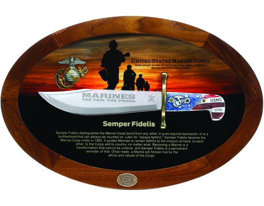 Case Commemorative Semper Fidelis USMC Bowie 9.5 inch Blade, Synthetic Handles, Wooden Display Box (BOWIE SS)