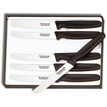 Victorinox Forschner 6 Piece Steak Knife Set, 4-1/4 inch Serrated Blades, Nylon Handles (Old Sku 47558)
