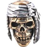 GD Skulls USA W7 Indian Skull 2