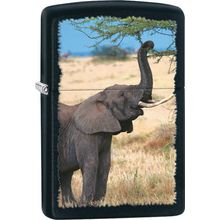 Zippo Elephant, Black Matte Classic