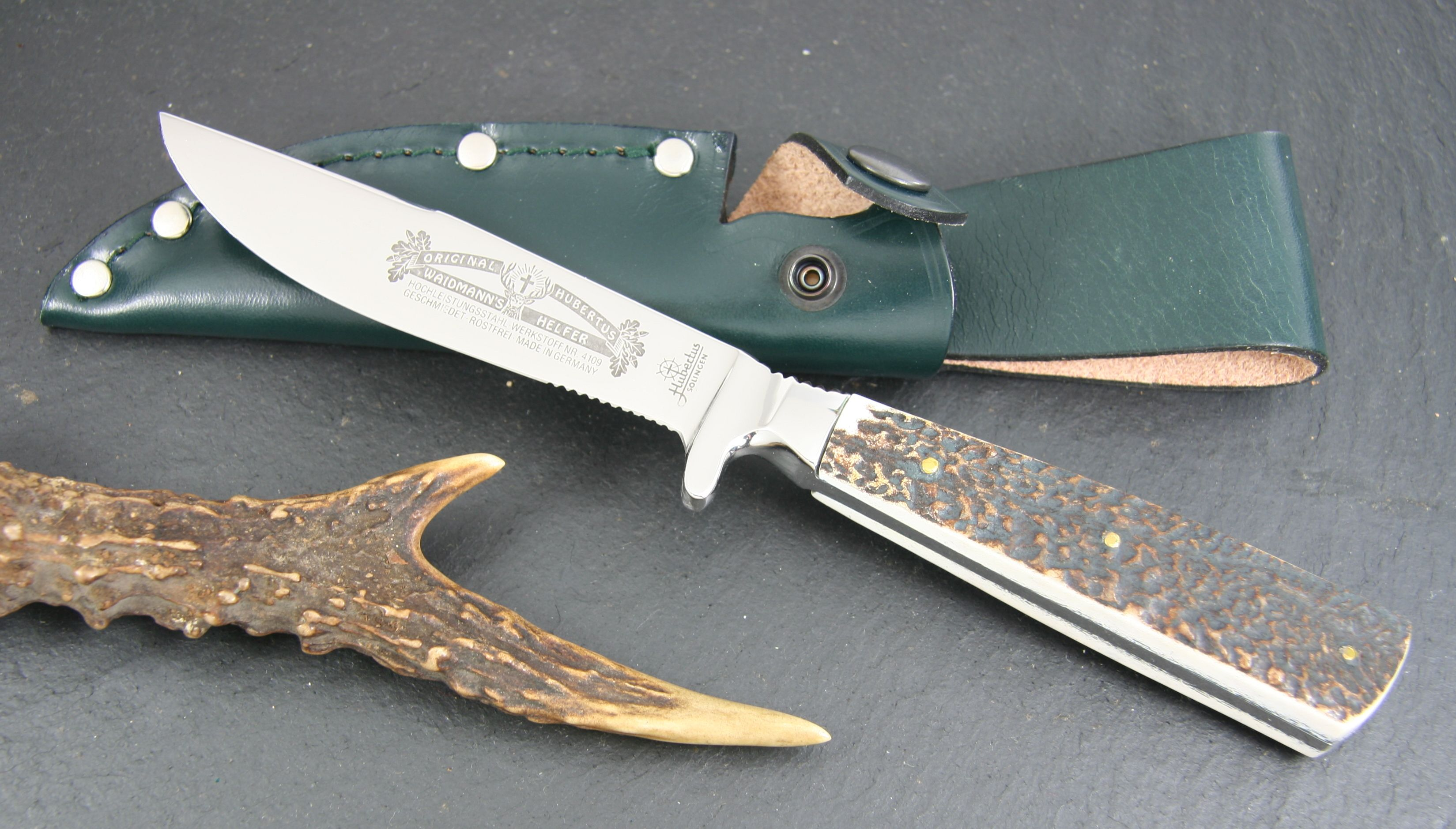 Hubertus Waidmann's Helfer Fixed 4.25 inch Satin Combo Blade, Stag Handles, Leather Sheath